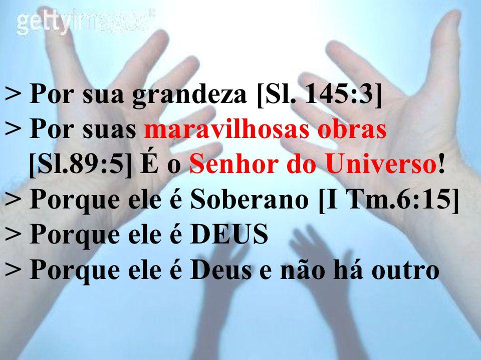 > Por sua grandeza [Sl. 145:3] > Por suas maravilhosas obras [Sl